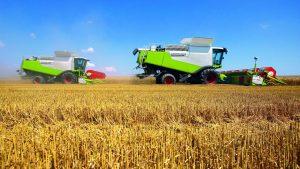 Сельскохозяйственные змли